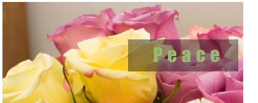 picture of roses to promote Sobriety for women